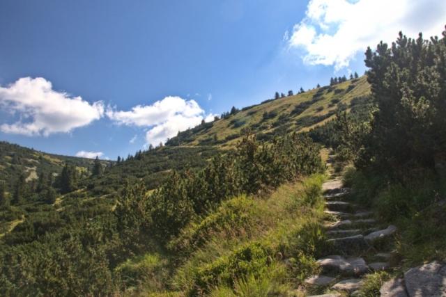 Weberova cesta